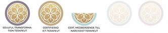 ICT Terapeuter Indelning 5.png