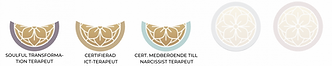 ICT Terapeuter Indelning 9.png