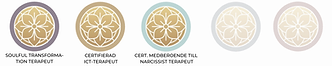 ICT Terapeuter Indelning 3.png