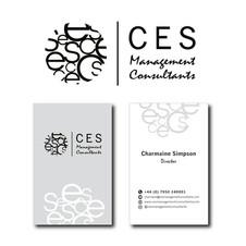 CES Management Consultants