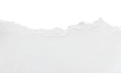 tornpaperbgservicespage2.jpg