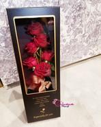 情人節早鳥優惠!_六支新鮮肯亞Kenya紅玫瑰  禮盒 _Hkd680😍😍�