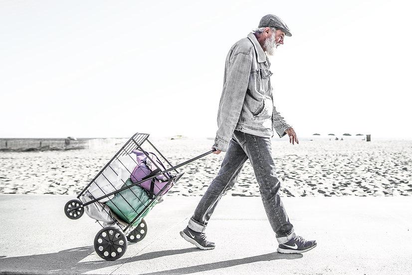 Cart Walker