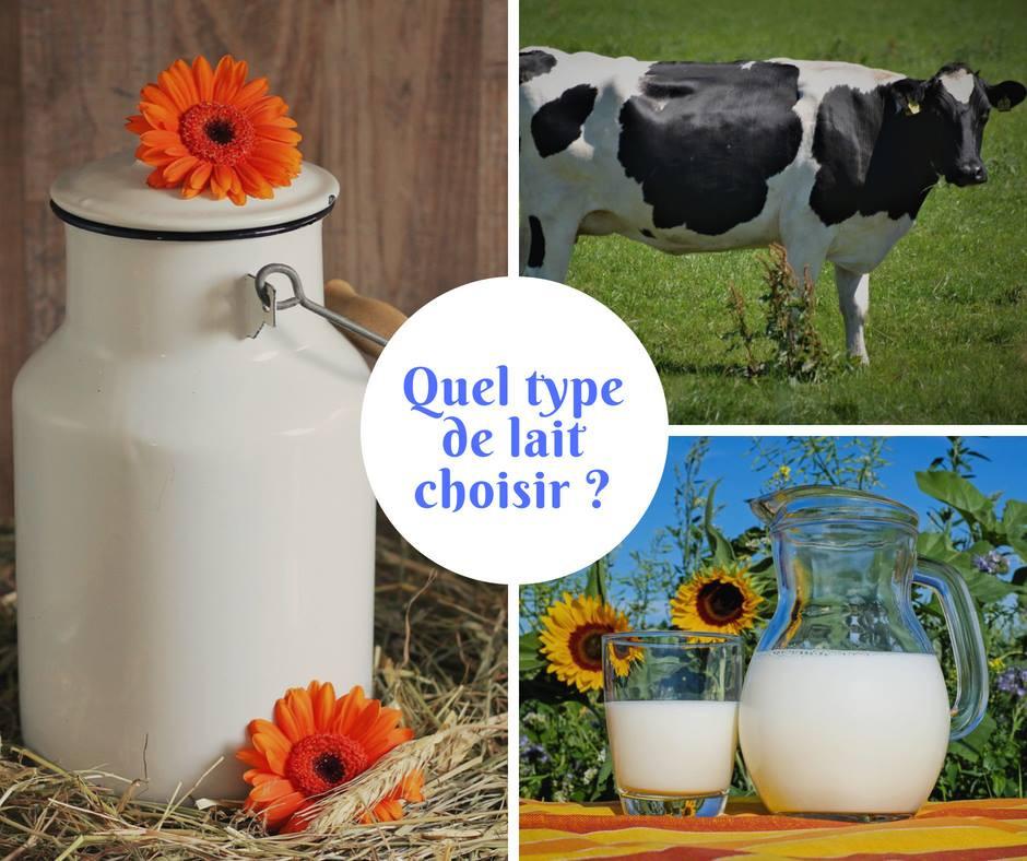 Type de lait