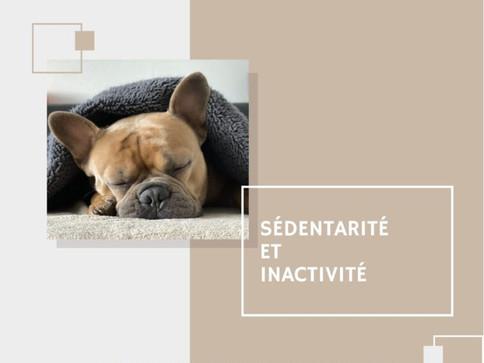 Sédentarité et inactivité