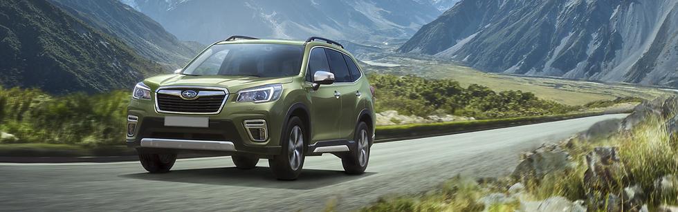 Subaru forester-e-boxer ibr auto roncq concessionnaire auto lille