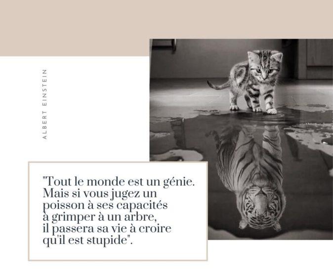 mylene-chauveau-dieteticienne-enseignante-apa-ploeren-vannes-morbihan-bretagne-publication-inspiration-citation-lundi
