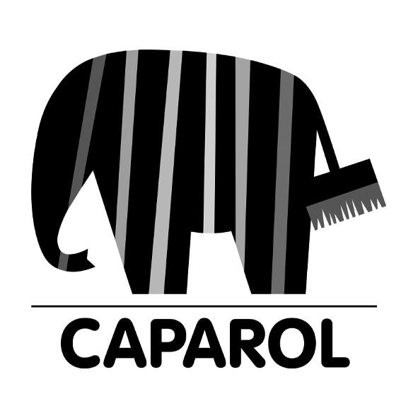 CAPAROL Partenaire Alliance peinture 44