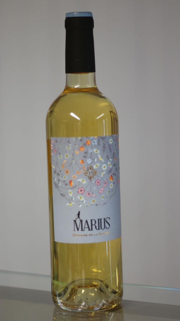 vin-jaune-marius-aux-saveurs-d'elven.jpg