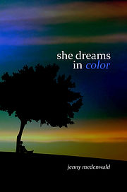 She Dreams in Color_frontcover_altcolor.