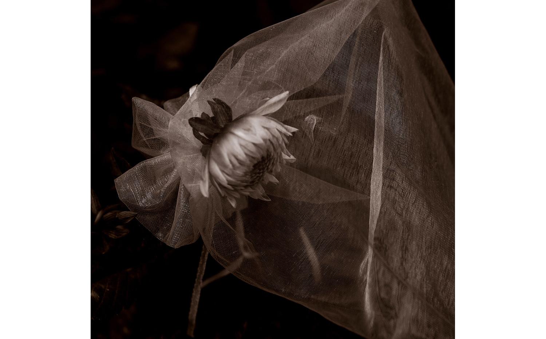 Sad Bride 5