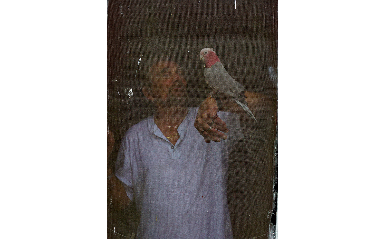 Birdman of Southampton