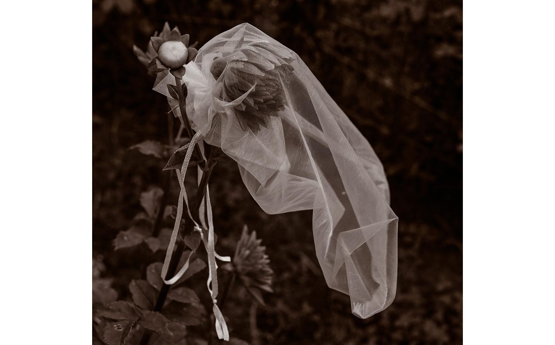 Sad Bride 8