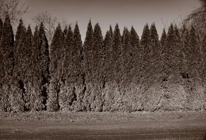 Evergreens, Bridgehampton