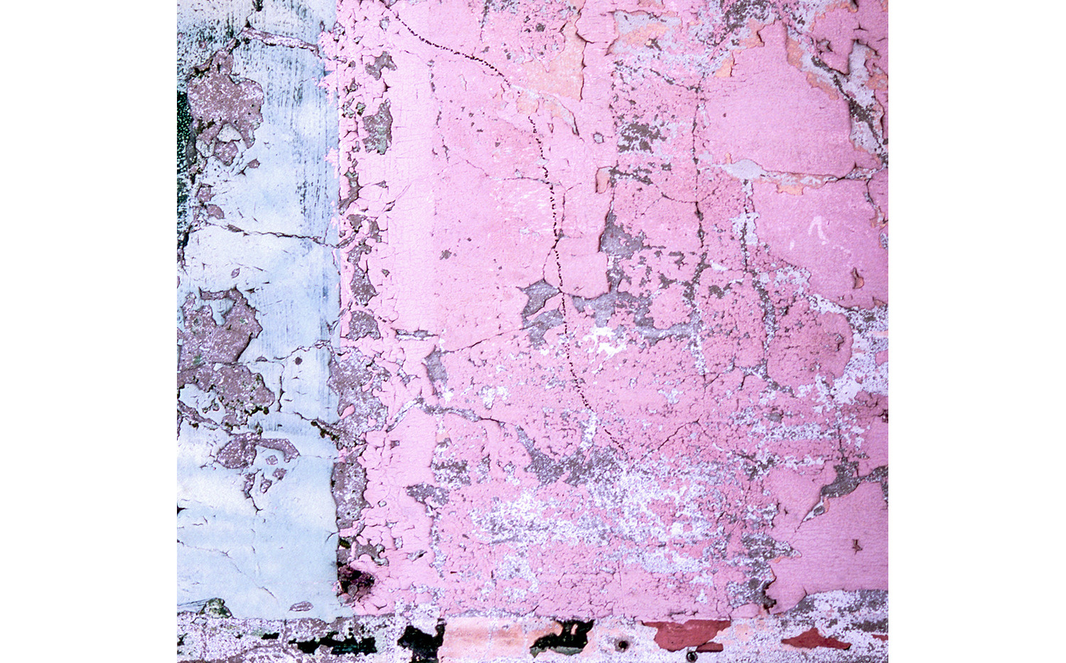 Pink wall, New Orleans