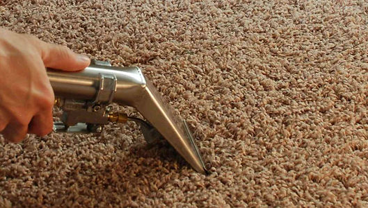 carpet cleaning dfw
