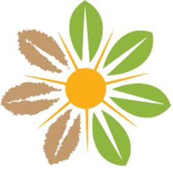 auxano logo