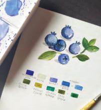 Nature Journaling with Botanical Artist Sanjana