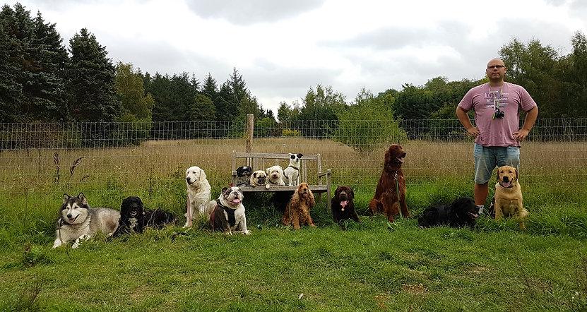 Magnus Hinge sammen med hundene i Hellerup Dog Walk's unikke hundehave for hunde i Købehavn frederiksberg og nordsjælland