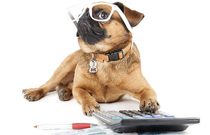 Calculating-cute-dog-price-cost-23320287