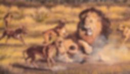 Afrikansk Løvehund (rhodesian richback). Løvejagt. Om Hellerup Dog Walk. Hellerup Dog Walk. Pack Walk. Hundebørnehave. Hundehave. Professionel hundelufter. Hundeluft. Hundelufter i København. Professionel hundelufter København. Professionel hundelufter Nordsjælland. Daycare4dogs. Professional dog walker Copenhagen. Daycare for dogs. Doglover. Hundekærlighed. Hundepasning. Hundeelsker.