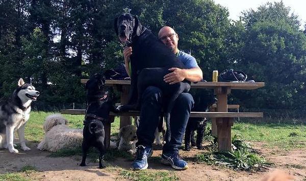 Hellerup Dog Walk Magnus Hinge elsker hunde professionel hundluftter hundehave hundebørnehave københavn, nordsjælland, frederiksberg og Storkøbenhavn