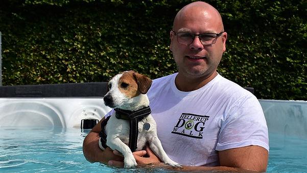 Jack Russel til hundesvømning hos Hellerup Dog Walk