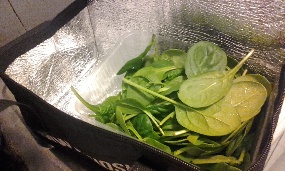 Baby spinach in recycled shopping bag