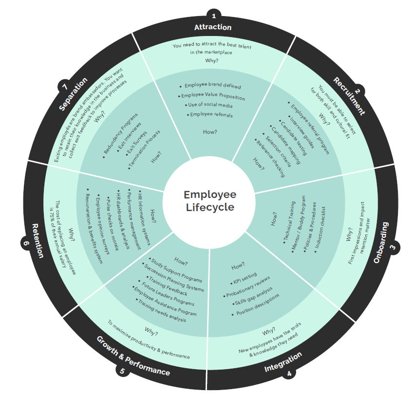 Graphic of employee lifecycle designed by The Epiphany Group.PNG