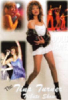 Tina_Turner_Tribute_Photo.JPG