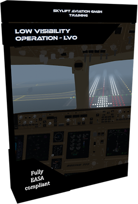 Low Visibility Operation (LVO)
