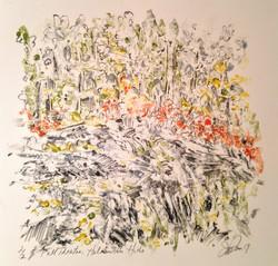 Jill Price, Fall Theatre- Haliburton Hills, 12 x 12, oil stick and graphite, 2017