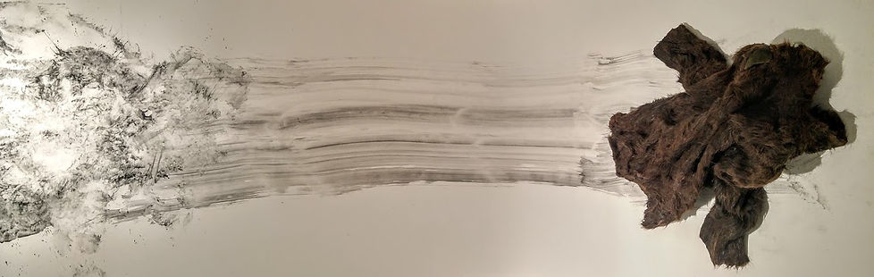 contemporary drawing, fur drawing, graphite drawing, performative drawing, Canadian Art, Jill Price drawing, textile drawing