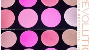Makeup Revolution Ultra Blush Palette in All About Pink Swatch + Review