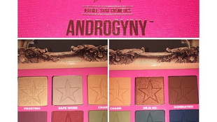 Jeffree Star Androgyny Palette Review + Swatches