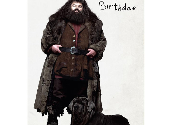 Harry Potter Hagrid's Cake Pop-Up Card