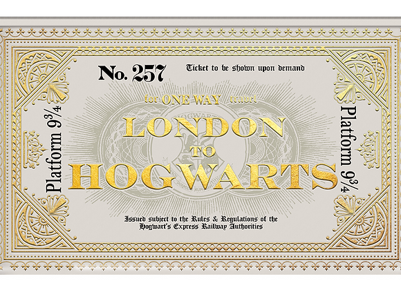 Hogwarts Ticket Pencil Case