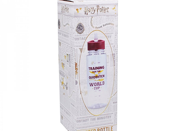 Water Bottle Plastic (700ml) - Harry Potter (Quidditch)