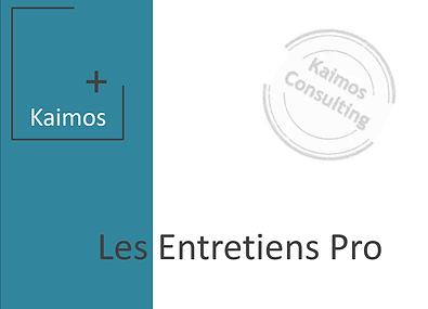 Entretien pro.png