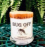 Bug%20Off_edited.jpg
