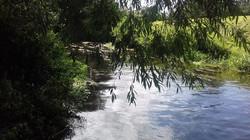 The River Waveney