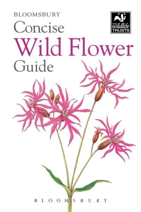 Concise Wild Flower Guide BW