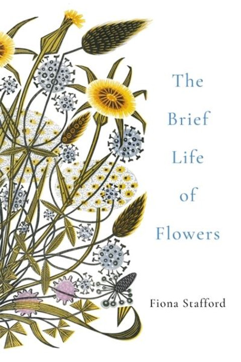 Brief Life Of Flowers