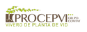 Procepvi, vivero de planta de vid