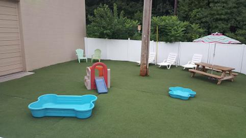 dog daycare outdoor park
