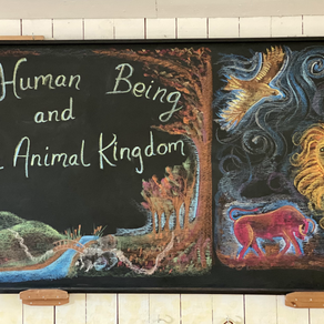 The Human Being and the Animal Kingdom