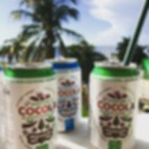 Eau de coco bio diet-food.fr