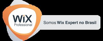 logo wix para site2.png