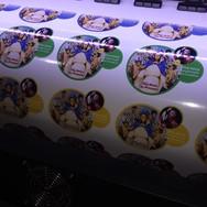 Impressão de adesivos etiquetas em Brasília DF