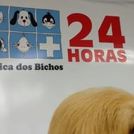 Comunicação Visual - Brasília Taguatinga DF